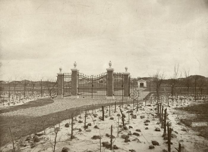 Westerbegraafplaats hoofdfoto - kopie