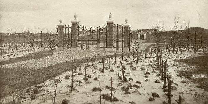 Westerbegraafplaats hoofdfoto